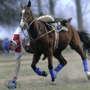 Deporte nacional - 2